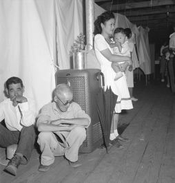 Manzanar_Relocation_Center_Manzanar_California._A_typical_interior_scene_in_one_of_the_barrack_ap_._._._-_NARA_-_538136.jpg